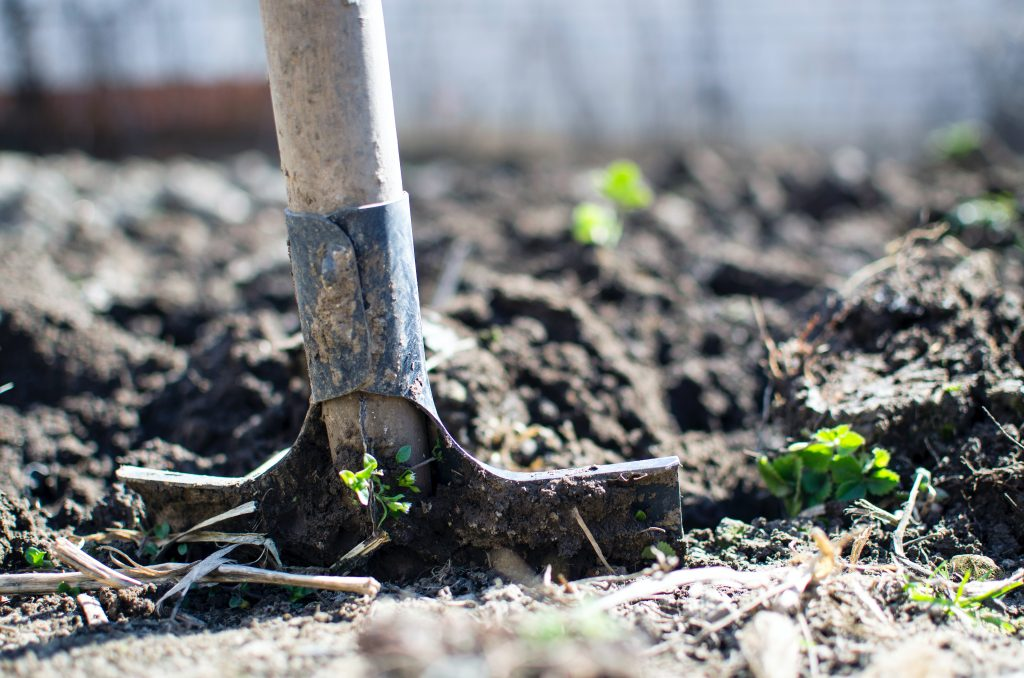 TNA Concrete - Top Landscaping Trends For 2021